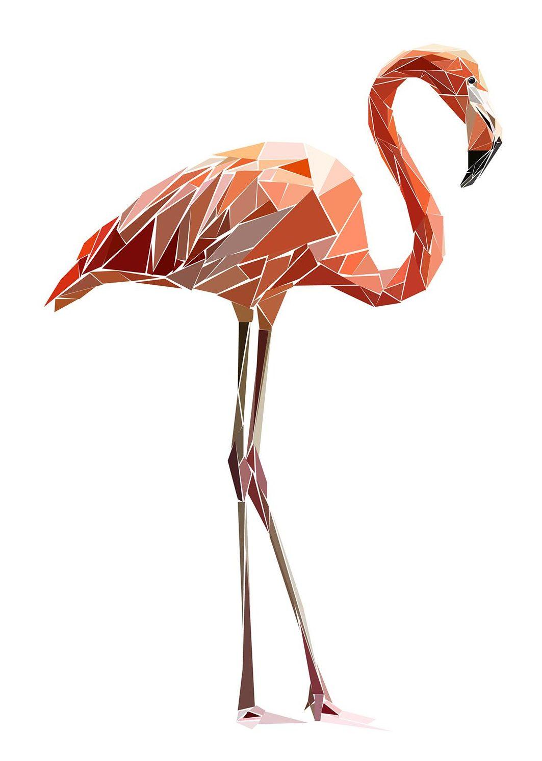 Flamingo Yoga Budapest